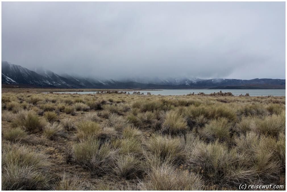 Mono Lake ... tolles Wetter herrscht hier