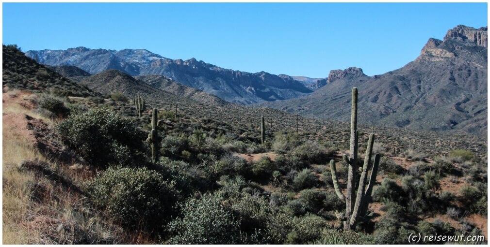 Eindrücke vom Apache Trail
