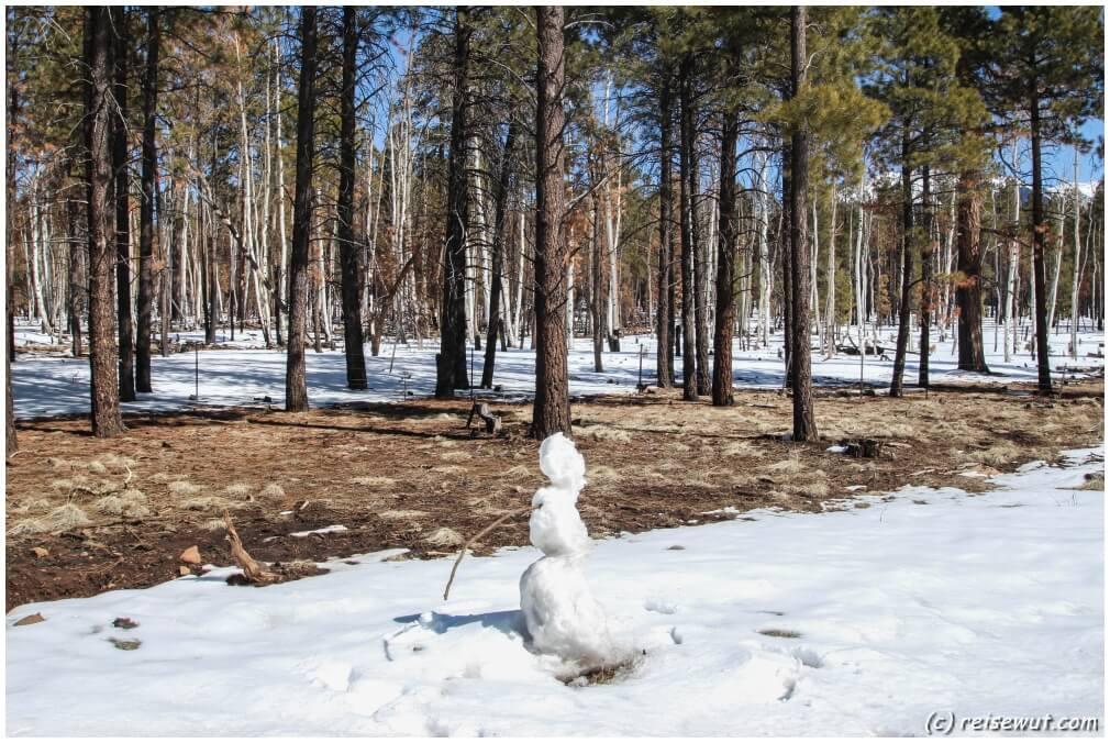 Man kommt ja auf die blödesten Ideen mit etwas Schnee am Straßenrand ;-)