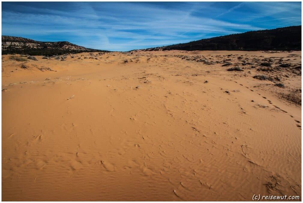 Ziemlich weitläufig scheinen die Coral Pink Sand Dunes zu sein