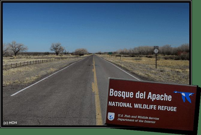 Bosque del Apache Zufahrt