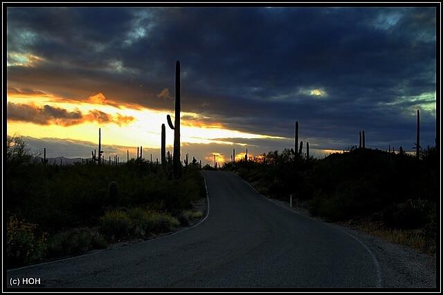 Sunset Saguaro National Park West