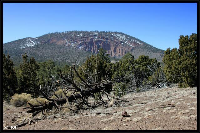 Entlang des Trails zum Red Mountain