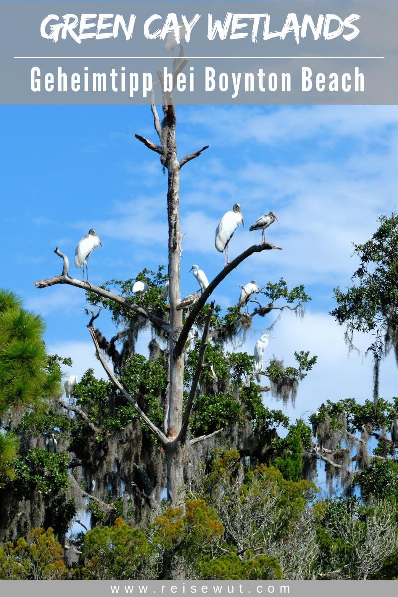 Green Cay Wetlands Florida - Pinterest Pin
