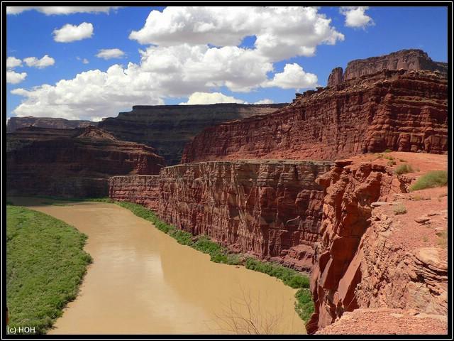 Ein Aussichtspunkt in den Canyon hinein