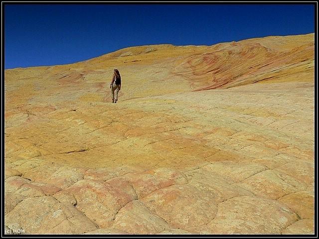 Unfassbare Farben am Yellow Rock