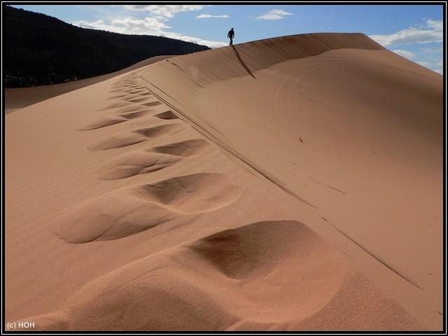 Die größte Düne in den Coral Pink Sand Dunes