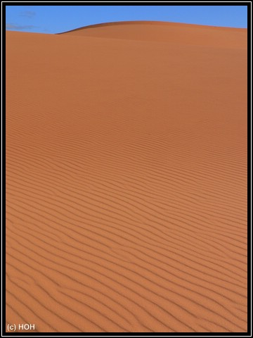 Coral Pink Sand Dune