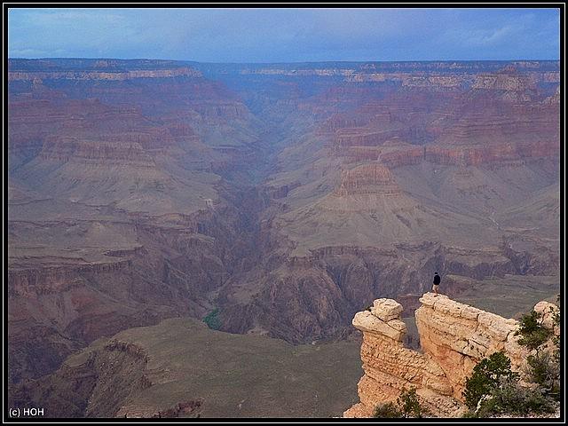 Ein wagemutiger am Grand Canyon South Rim