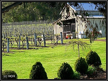 Donnelly River Wines