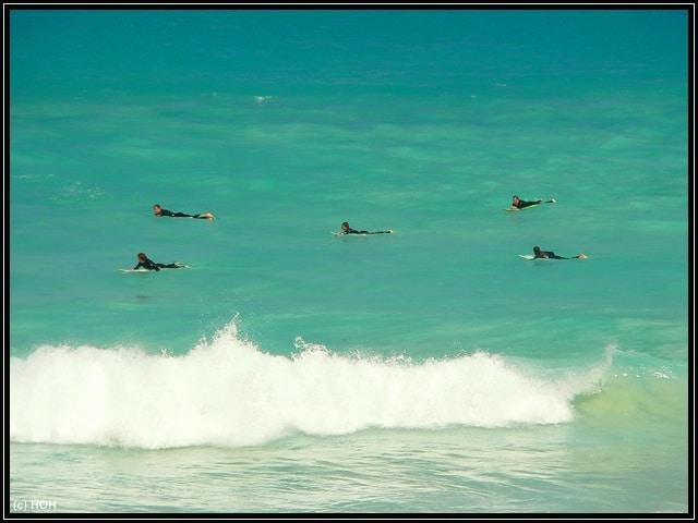 Warten auf die perfekte Welle ... Surfer bei Esperance