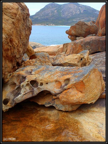Thistle Cove Rocks