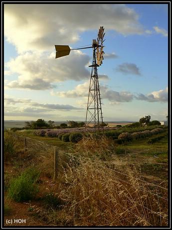 Windrad bei Northampton