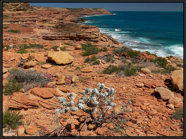 Blick entlang der Küste in Richtung Mushroom Rock