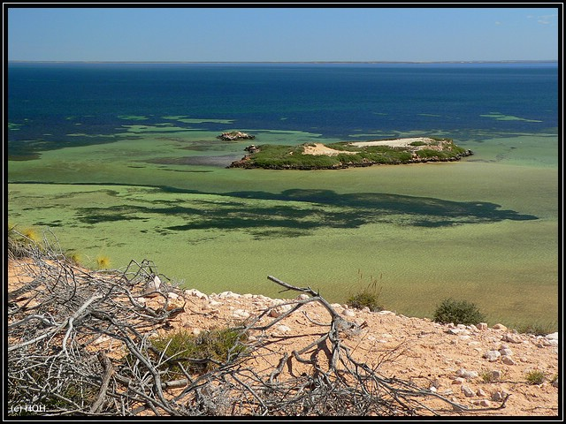 Eagle Bluff ... im Hintergrund die Insel des Useless Loop