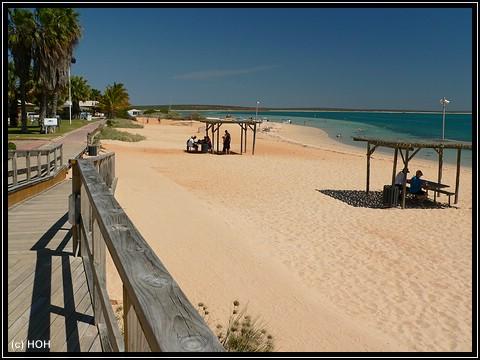 Strand von Monkey Mia