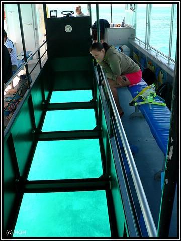 Auf dem Glasbodenboot