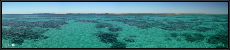 Ningaloo Reef Panorama