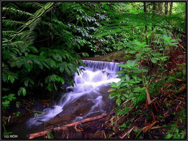 Bach beim Munduk-Wasserfall