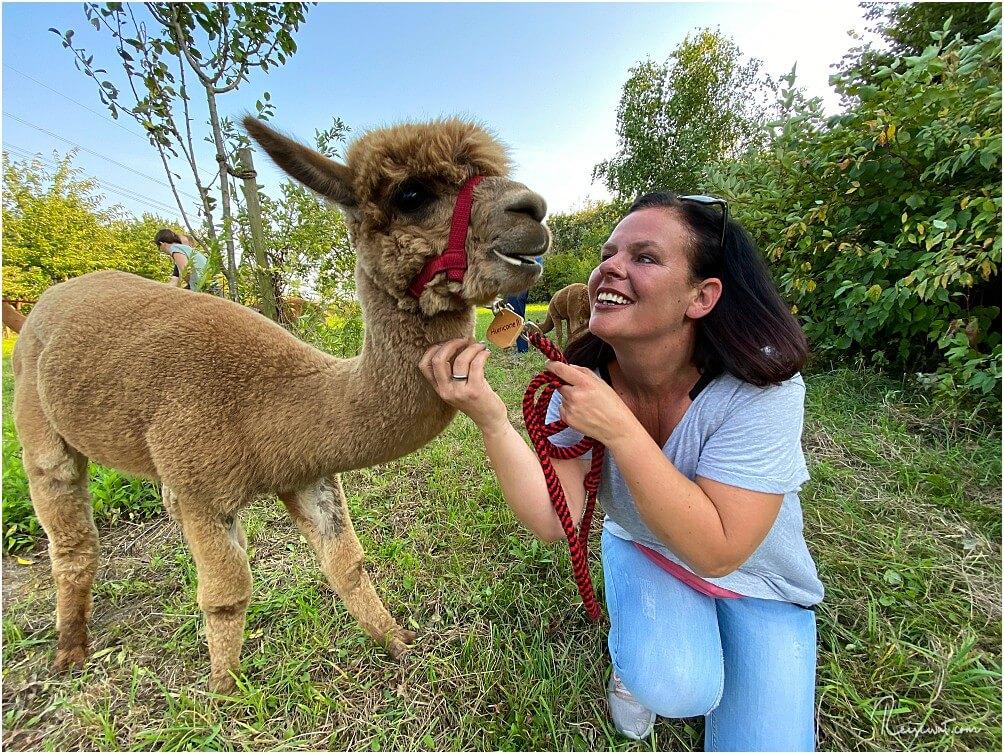 Wenn man als Mann immer schon mal wissen wollte, wie eine verliebte Frau aussieht ... bucht eine Alpaka-Wanderung