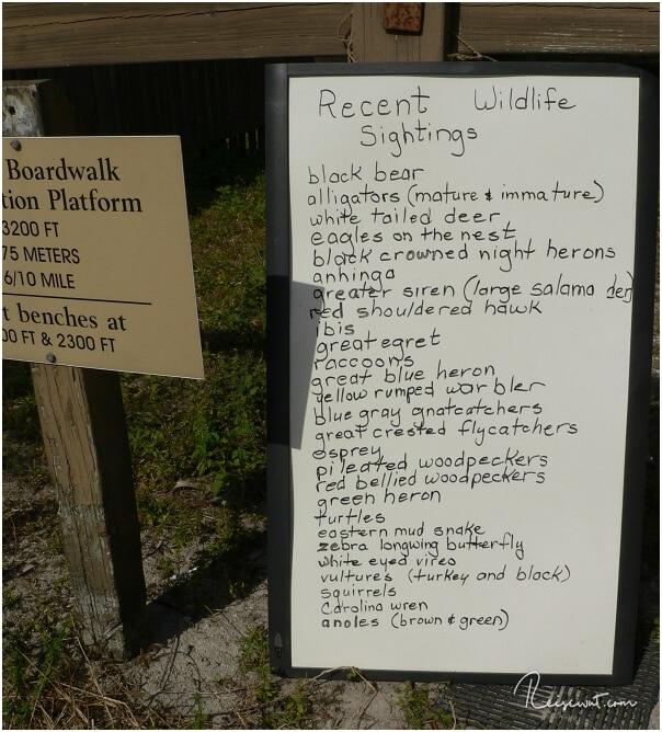 Eine Liste der aktuellen Tiersichtungen im Park