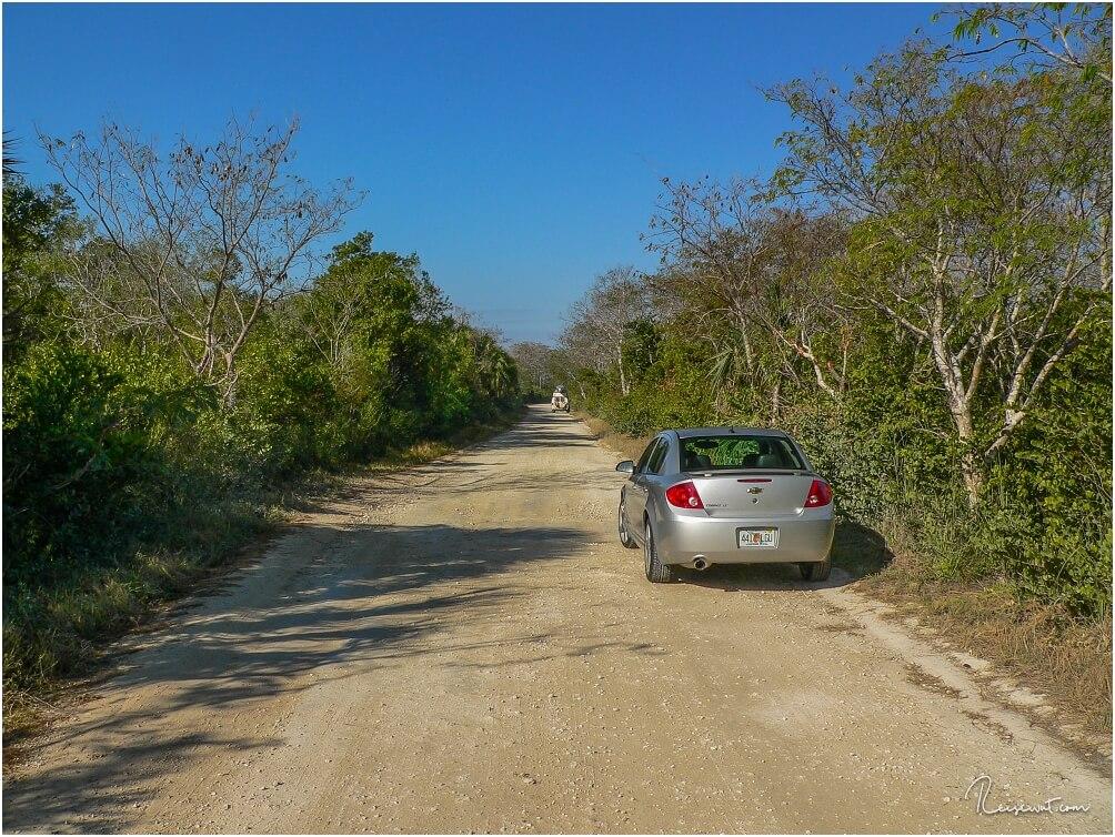 Die nicht asphaltierte Loop Road ist definitiv ein Pflichtbesuch in den Everglades
