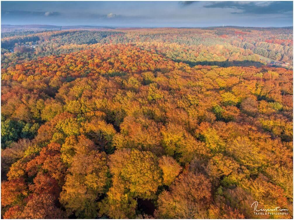 Bunte Bäume im Herbst wollte ich schon länger einmal von oben fotografieren, endlich hatte ich einmal die Gelegenheit dazu