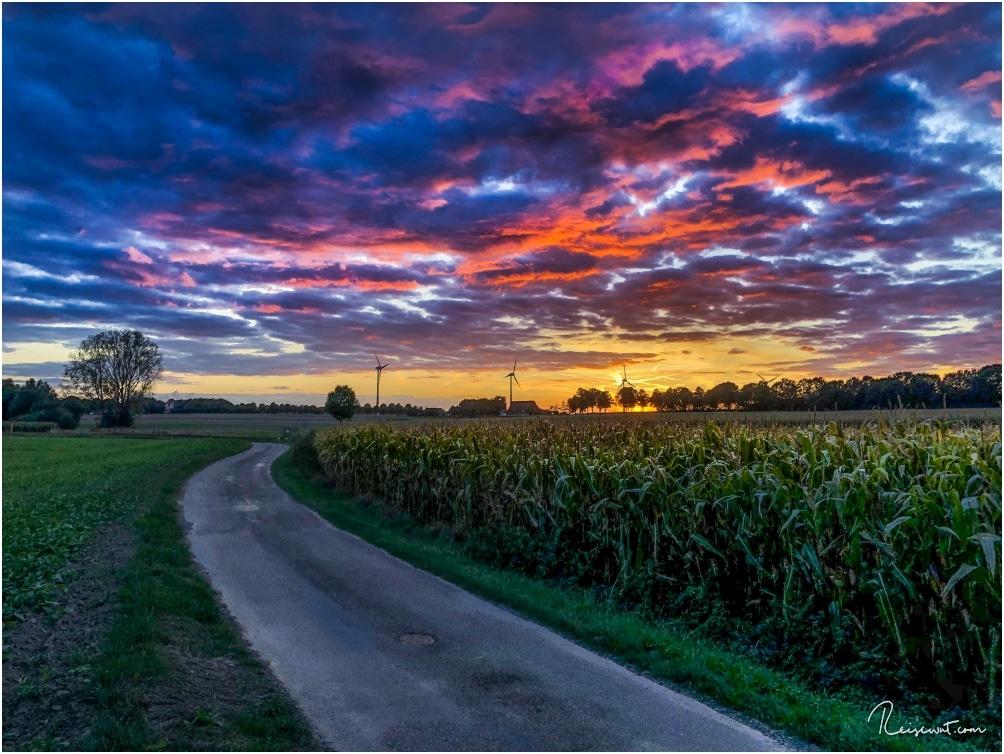 Ein fast schon kitschig bunter Sonnenuntergang an diesem Abend im Herbst