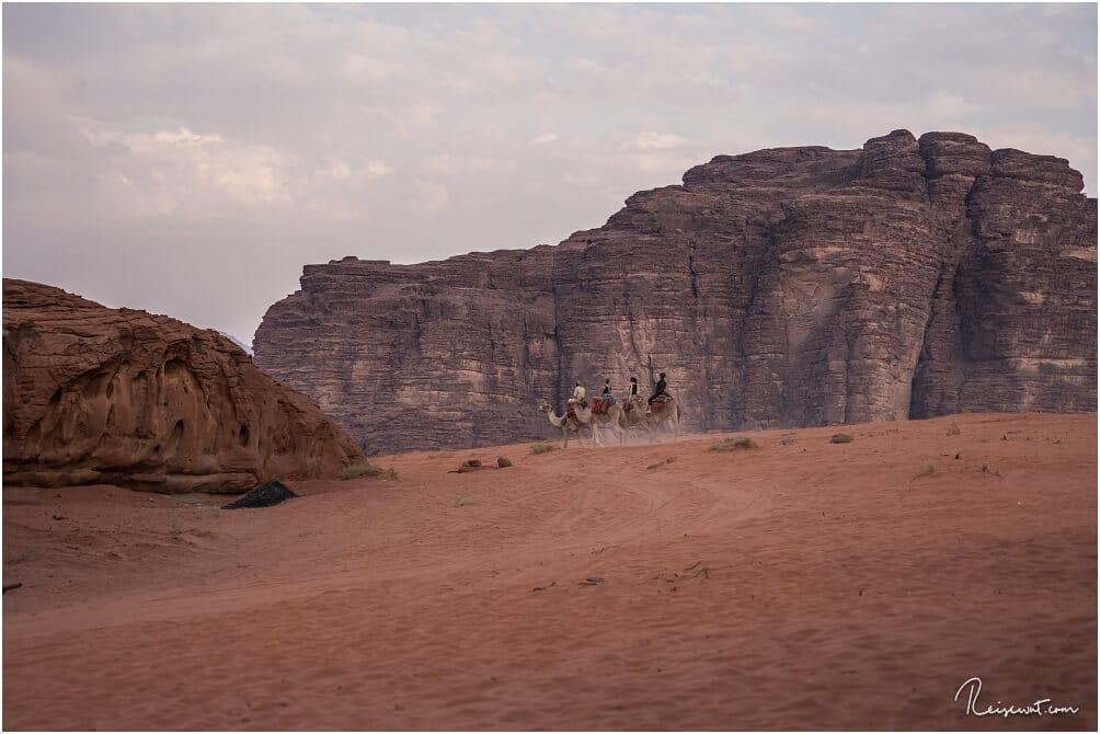 Eine Kamel-Tour ist nur eine der Möglichkeiten, Wadi Rum zu erkunden