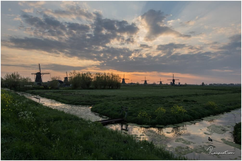 Zu Fuß gehe ich gemütlich in Richtung Windmühlen von Kinderdijk. Früh Morgens ist das ein toller Spaziergang.