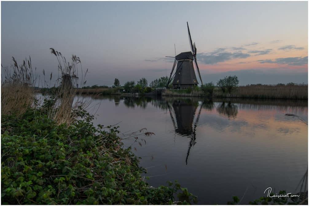 Windmühlen wohin mal blickt, 19 Stück an der Zahl gibt es in Kinderdijk