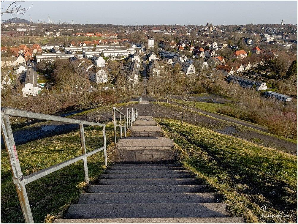 Blick auf die Treppe und die darunter liegende Schüngelbergsiedlung
