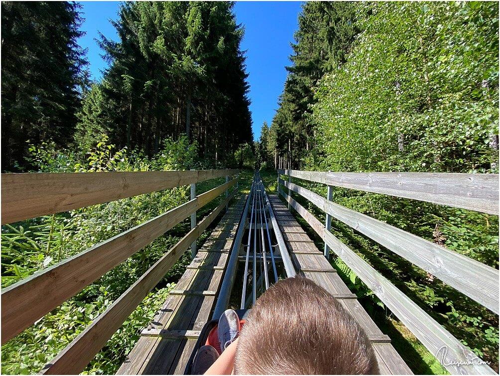 Fahrt mit der Sternrodler Sommerrodelbahn beim Erlebnisberg Sternrodt