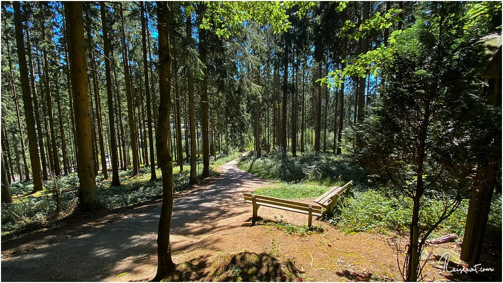 Wanderweg quer durch den Wald am Biggesee