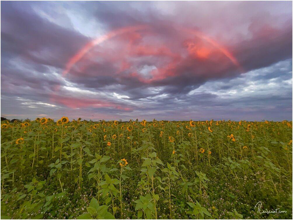 Sieht man auch nicht alle Tage: Regenbogen zum Sonnenuntergang
