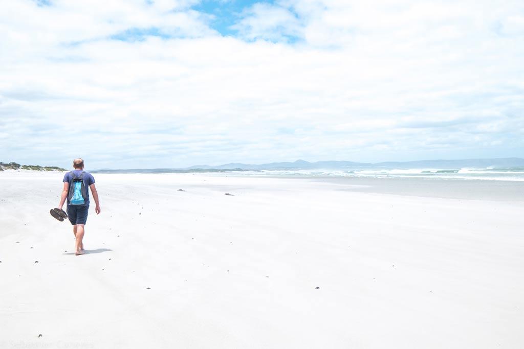 Spazieren am Strand in Hermanus an der Garden Route