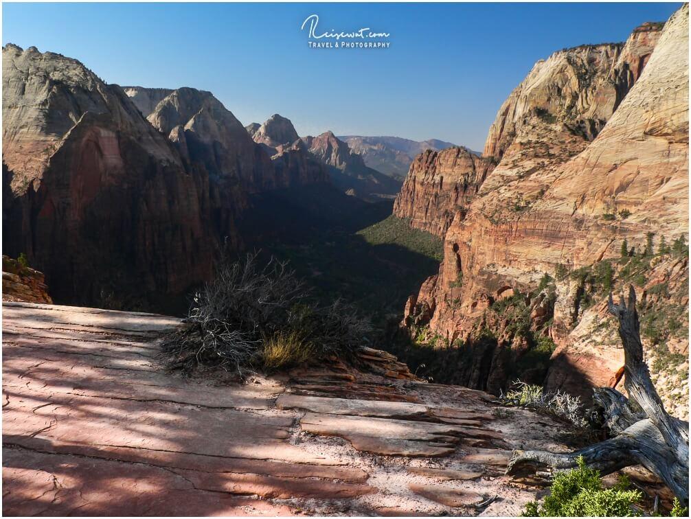 Der Zion Canyon in seiner ganzen Pracht
