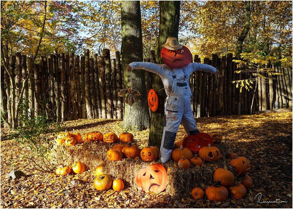 """Zu Halloween ist die ZOOM Erlebniswelt immer dem Anlass entsprechend """"dekoriert"""""""