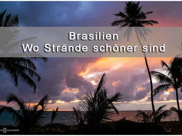 Titelbild Brasilien