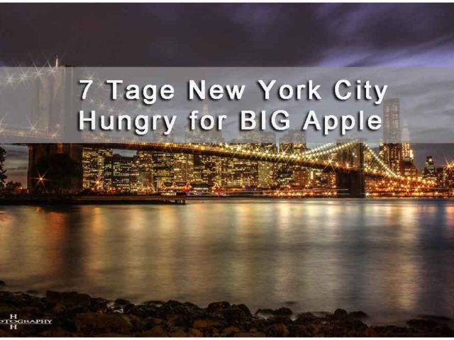 Titelbild New York City 2010