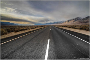 Lonely Road