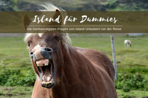 Island für Dummies - die kuriosesten Fragen