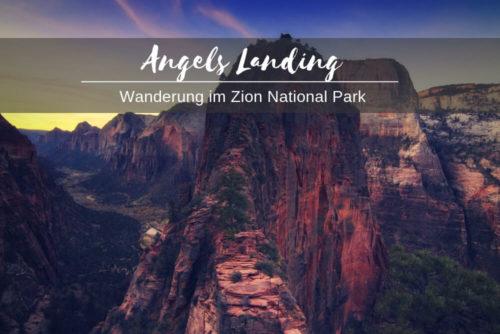 Angels Landing Wanderung im Zion National Park