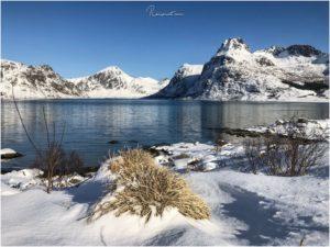 Kurz vorm Abzweig zum Nusfjord