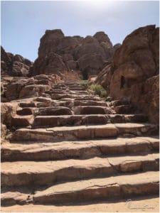 Stufen am Indiana Jones Trail
