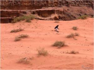 Sandboarding in Wadi Rum
