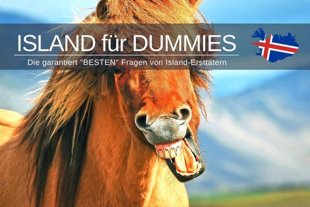 Island Fuer Dummies