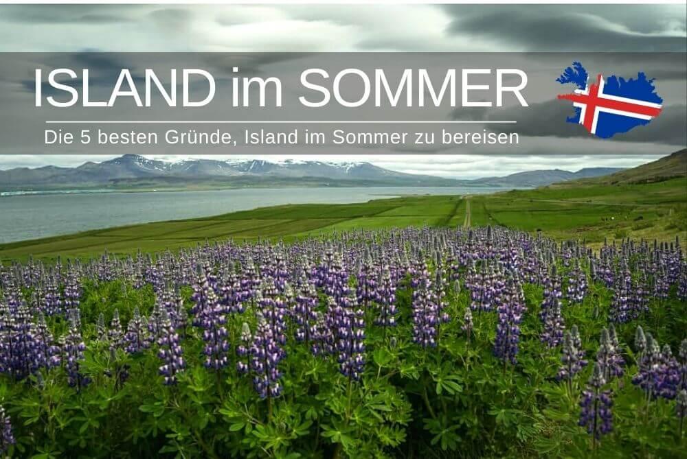 Island Im Sommer
