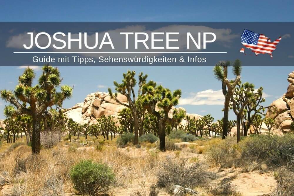 Joshua Tree National Park Guide Tipps