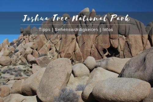 Joshua Tree National Park Tipps Sehenswürdigkeiten